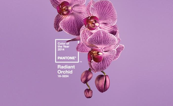 Pantone Radiant Orchid couleur 2014