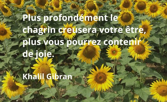 chagrin et joie, Khalil Gibran